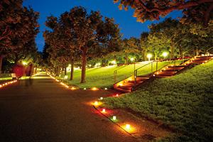 Kurparkfest mit Parkbeleuchtung