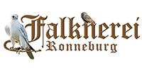 Zur Homepage der Falknerei Ronneburg