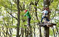 Kinder beim Klettern im Kletterwald Hoherodskopf